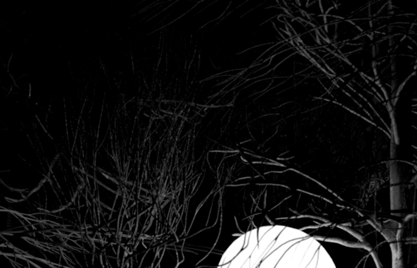 img-Lost_Moon-300dpi-1