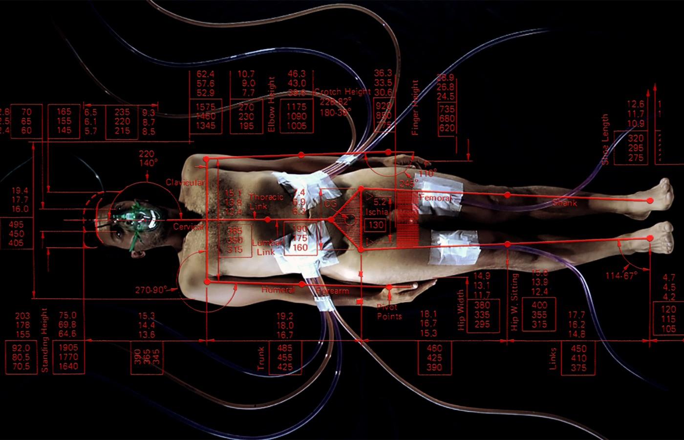 web anthropometry_marcantonio_lunardi_300dpi